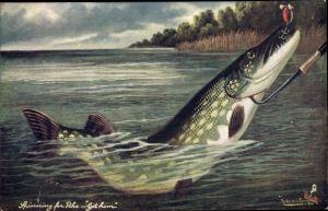 Künstler Ak Spinning for Pike, Got Him, Fisch am Angelhaken