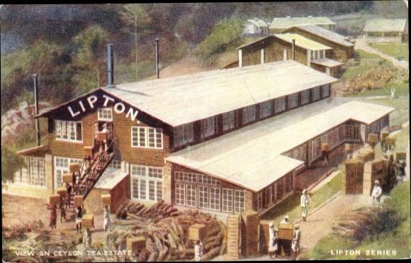 Künstler Ak Ceylon Sri Lanka, Lipton Tea Estate