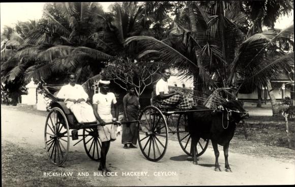Ak Ceylon Sri Lanka, Rickshaw and Bullock Hackery