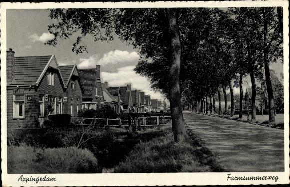 Ak Appingedam Groningen Niederlande, Farmsummerweg, Allee, Siedlung
