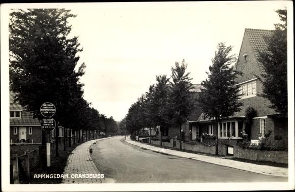 Ak Appingedam Groningen Niederlande, Oranjeweg, Siedlung