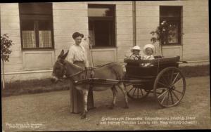 Ak Großherzogin Alexandra, Erbgroßherzog Friedrich Franz von Mecklenburg Schwerin, Christian Ludwig