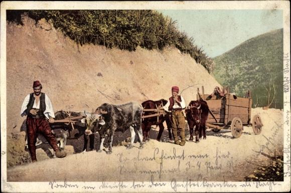 Ak Bosnien Herzegowina, Bosnischer Bauernwagen