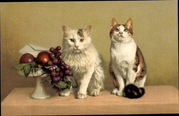 Ak Nenke und Ostermaier, Photochromie 1003 10014, zwei Katzen, Obstschale