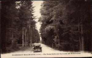 Ak St. Genest Malifaux Loire, Un sois bois sur la route de St. Etienne