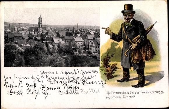 Ak Werdau an der Pleiße in Sachsen, Panorama vom Ort, Fritze Bliemchen