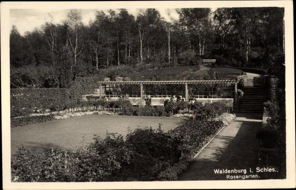 Ak Wałbrzych Waldenburg Schlesien, Rosengarten