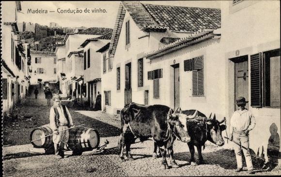 Ak Insel Madeira Portugal, Conducao de vinho