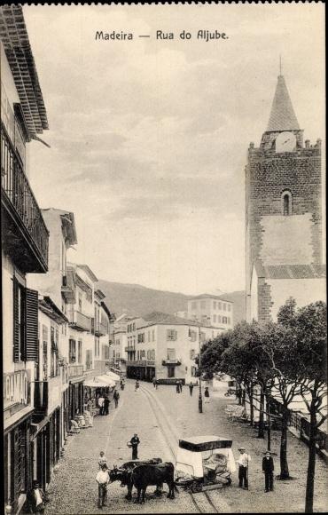 Ak Insel Madeira Portugal, Rua do Aljube