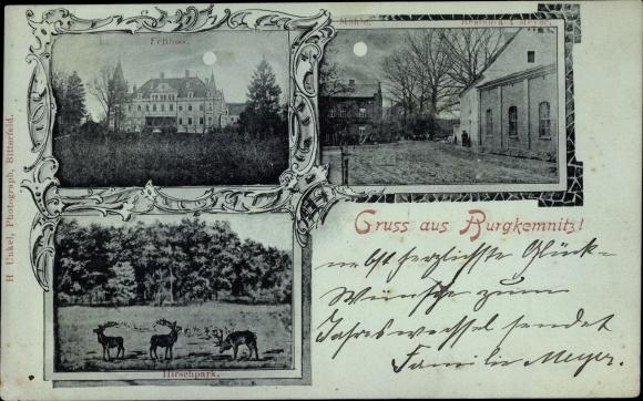 Mondschein Ak Burgkemnitz Muldestausee Sachsen Anhalt, Hirschpark, Schloss