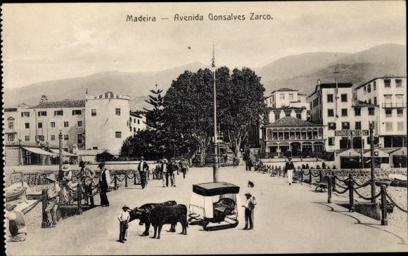 Ak Insel Madeira Portugal, Avenida Gonsalves Zarco