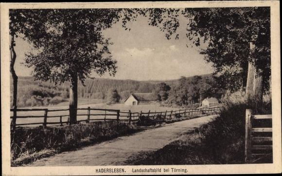 Ak Haderslev Hadersleben Dänemark, Landschaftsbild bei Törning