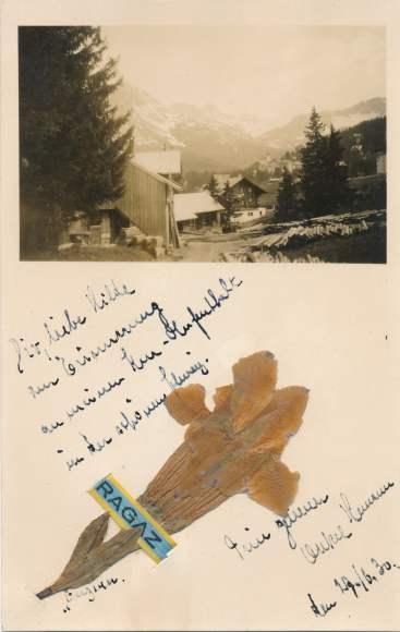 Material Foto Ak Bad Ragaz Kanton St. Gallen, Ortschaft, Getrocknete Blume