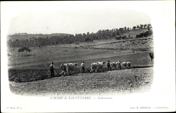 Ak Lozère, Causse de Sauveterre, Laboureurs, Rinderpflug, Bauern