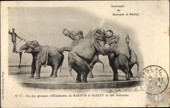 Ak Barnum Bailey Zirkus, Un des groupes d'Éléphants