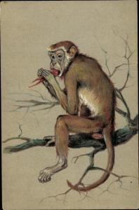 Künstler Ak Affe isst eine Rübe auf einem Baumast