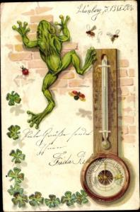 Präge Ak Barometer, Wetterfrosch, Kleeblätter, Käfer