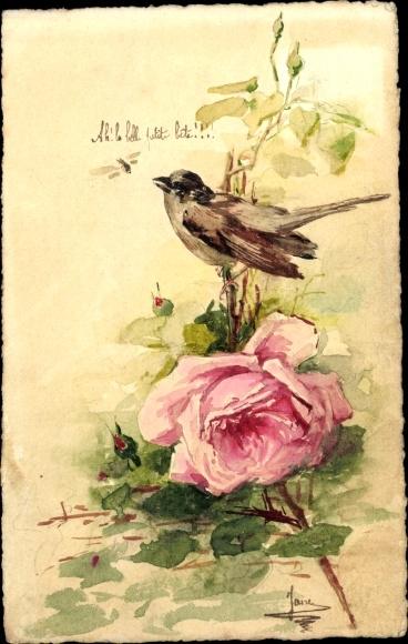 Handgemalt Ak Spatz auf Rosenzweig, Blüte, Fliege