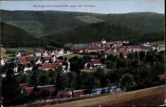 Ak Hasserode Wernigerode Sachsen Anhalt, Blick gegen den Steinberg, Ort 0