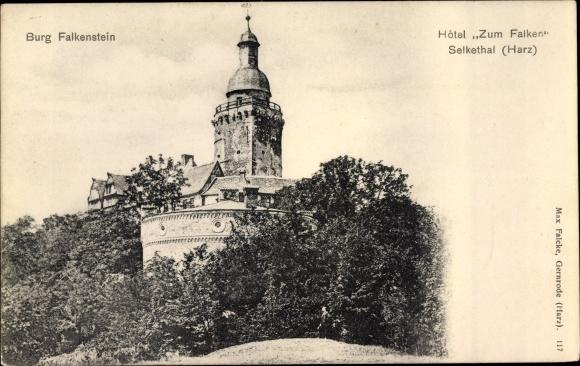 Ak Falkenstein Harz Sachsen, Burg, Hotel Zum Falken, Selkethal 0