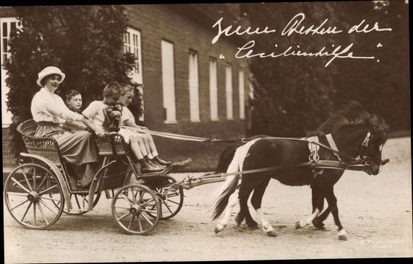 Ak Kronprinzessin Cecilie von Preußen mit ihren Söhnen, Ponywagen, Cecilienhilfe 0