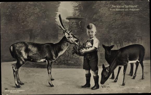 Ak Prinz Wilhelm von Preußen, Der kleine Tierfreund, Hirsche 0
