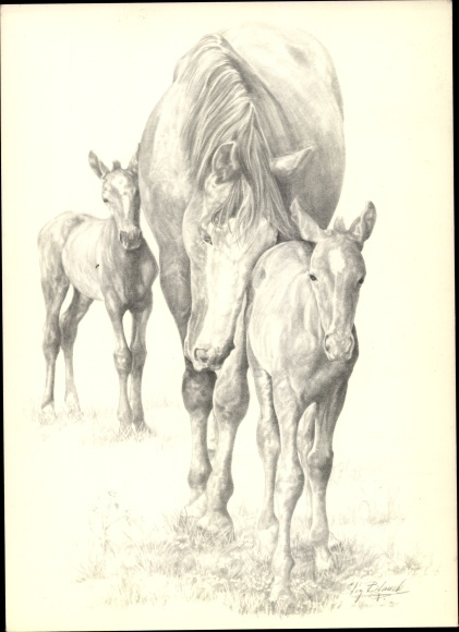 Künstler Ak Blanck, Stif, Zosna med tvillingfoi, Pferd mit Fohlen