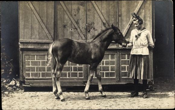 Ak Frau in Kleid mit Pferde Fohlen, Stall