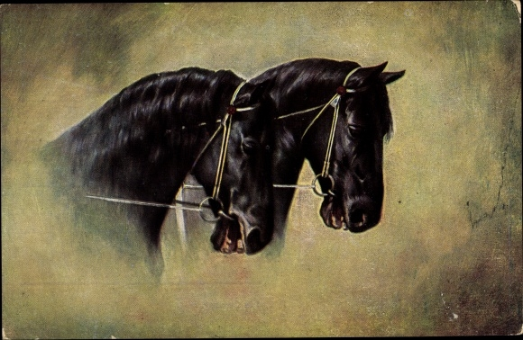 Künstler Ak Pferdeköpfe, Portrait, Novitas Serie 204