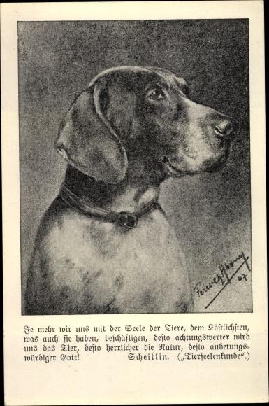 Ak Scheitlin, Tierseelenkunde, Hundeportrait