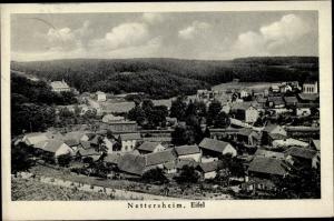 Ak Nettersheim in der Eifel, Panorama vom Ort