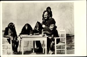 Ak Städtischer Tiergarten Frankfurt am Main, Menschenaffengruppe, Schimpansen am Tisch