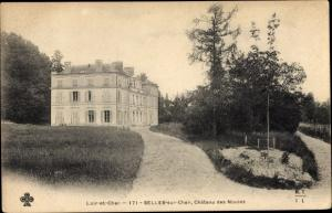 Ak Selles Saint Denis Loir et Cher, Vue du Château des Nouies