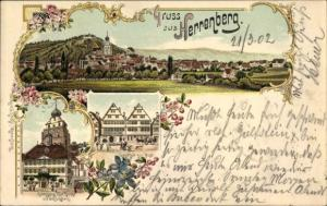 Litho Herrenberg in Baden Württemberg, Rathaus, Kirche, Schlossberg, Gasthof zur Post, Panorama