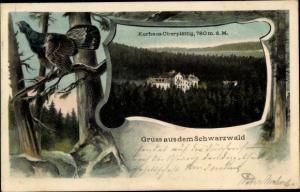 Passepartout Ak Oberplättig Eichwald Bühlertal, Panorama, Auerhahn