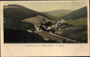Ak Wildenthal Eibenstock im Erzgebirge, Gesamtansicht