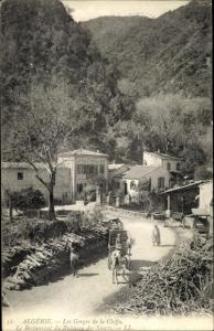 Ak Algerien, Les Gorges de la Chiffa, Restaurant du Ruisseau des Singes