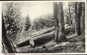Ak Miltenberg in Unterfranken Bayern, Heunensäulen, Waldpartie
