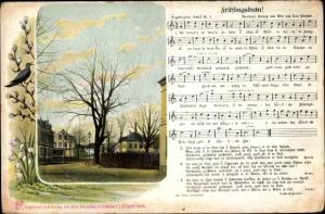 Lied Ak Frihlingsbutn, Baum, Weidenkätzchen, Amsel