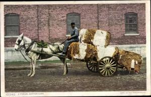 Ak Südstaaten USA, A Typical Cotton Cart, Baumwolle, Fuhrwerk