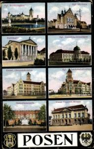 Ak Poznań Posen, Schloss, Theater, Museum, Wappen