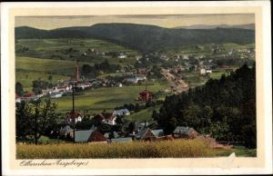Ak Olbernhau im Erzgebirge Sachsen, Panorama