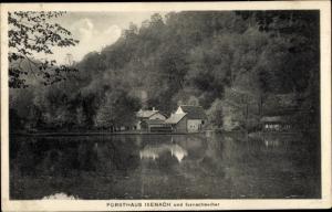 Ak Bad Dürkheim am Pfälzerwald, Forsthaus Isenach und Isenachweiher