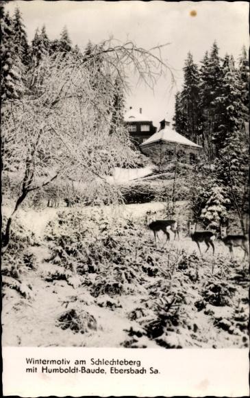 Ak Ebersbach in Sachsen Ebersbach Neugersdorf, Wintermotiv am Schlechteberg, Humboldt Baude 0