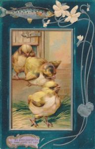 Präge Litho Drei Küken kommen aus Hühnerhaus, Fisch