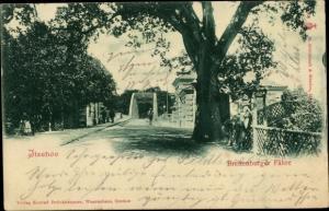 Ak Itzehoe in Schleswig Holstein, Breitenburger Fähre