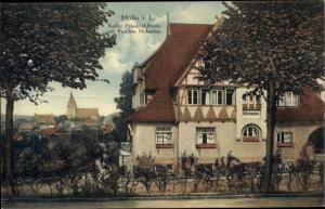 Ak Mölln im Herzogtum Lauenburg, Kaiser Friedrich Straße, Pension Hubertus