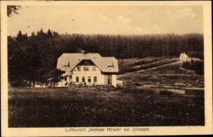 Ak Weißer Hirsch bei Jöhstadt im Erzgebirge Sachsen, Gesamtansicht