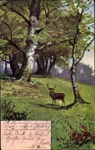 Künstler Ak Landschaft mit Hirsch