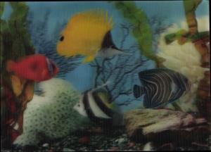 3-D Ak Verschiedenfarbige Fische im Aquarium, Steine, Korallen, Wasserpflanzen